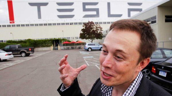 Elon Musk Assets